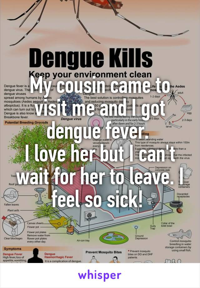 My cousin came to visit me and I got dengue fever.  I love her but I can't wait for her to leave. I feel so sick!