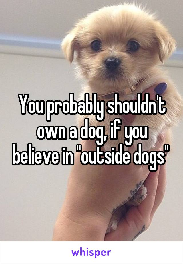 "You probably shouldn't own a dog, if you believe in ""outside dogs"""