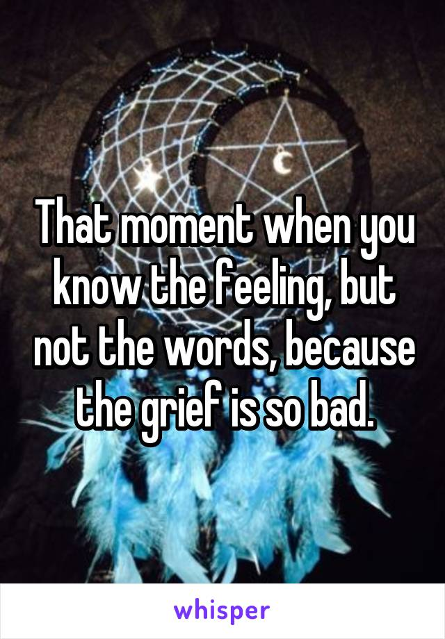 That moment when you know the feeling, but not the words, because the grief is so bad.