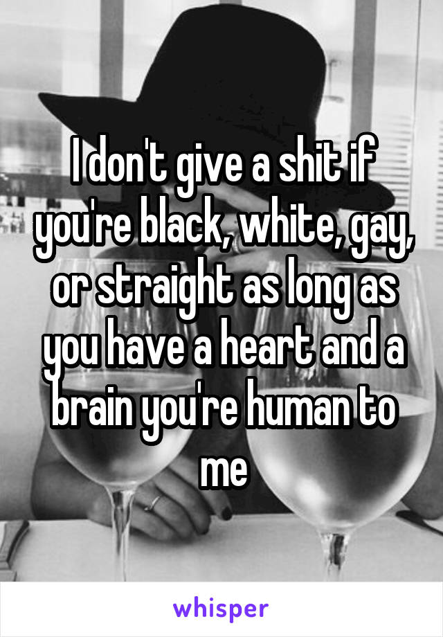 I don't give a shit if you're black, white, gay, or straight as long as you have a heart and a brain you're human to me