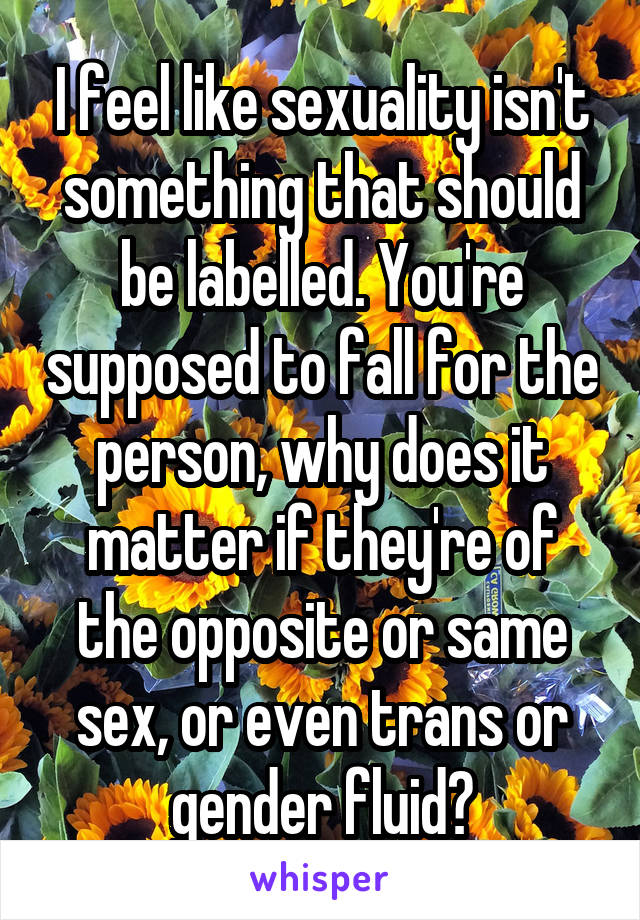 I feel like sexuality isn't something that should be labelled. You're supposed to fall for the person, why does it matter if they're of the opposite or same sex, or even trans or gender fluid?