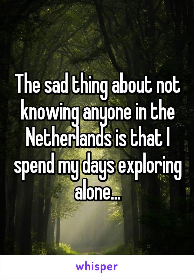 The sad thing about not knowing anyone in the Netherlands is that I spend my days exploring alone...