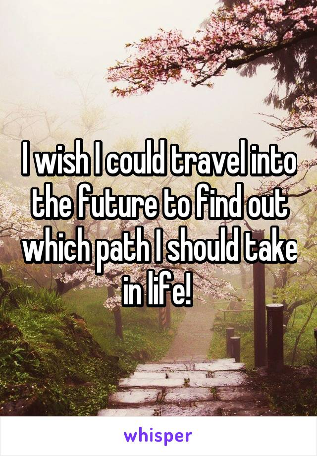 I wish I could travel into the future to find out which path I should take in life!