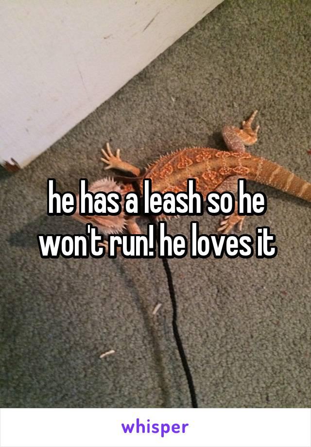 he has a leash so he won't run! he loves it