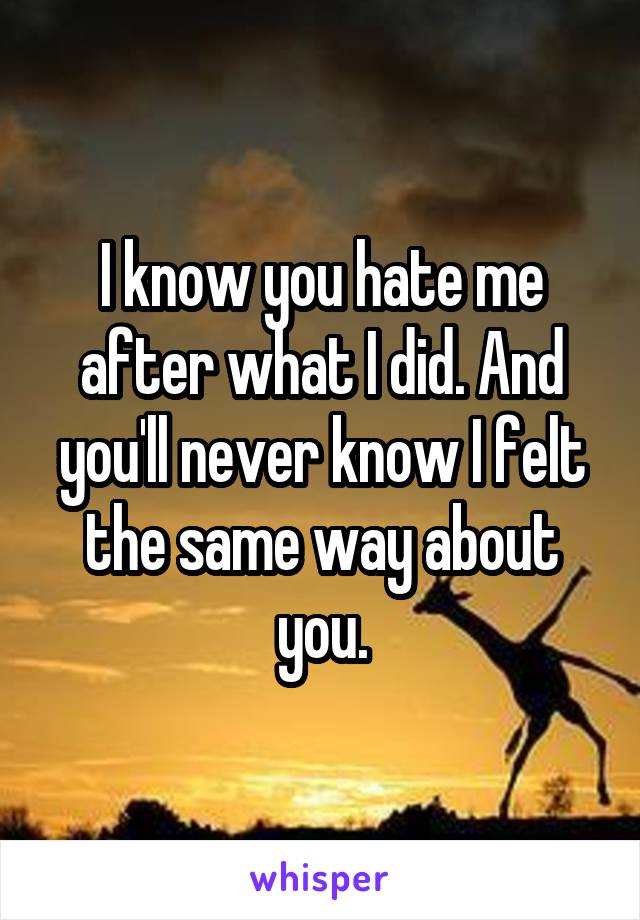 I know you hate me after what I did. And you'll never know I felt the same way about you.