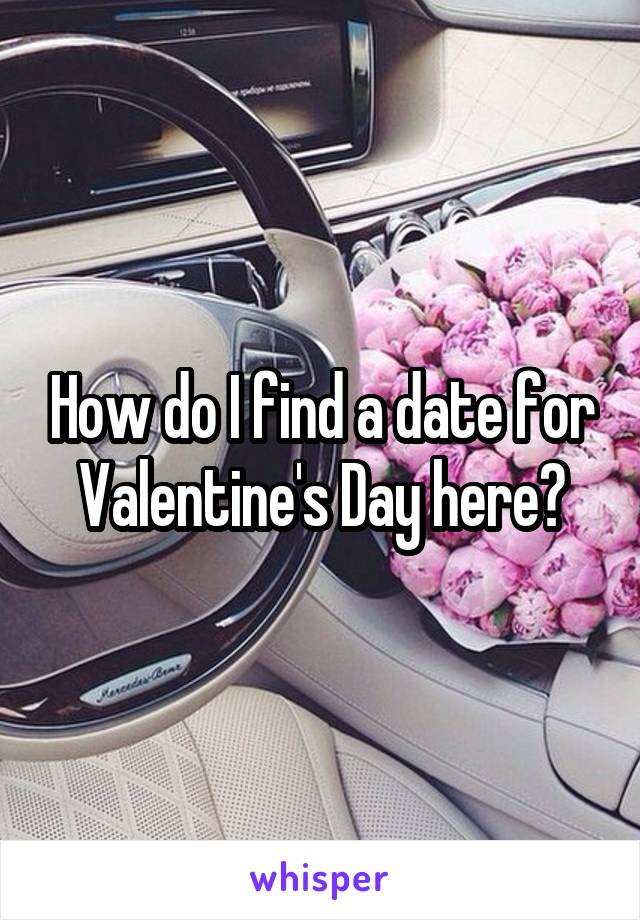How do I find a date for Valentine's Day here?