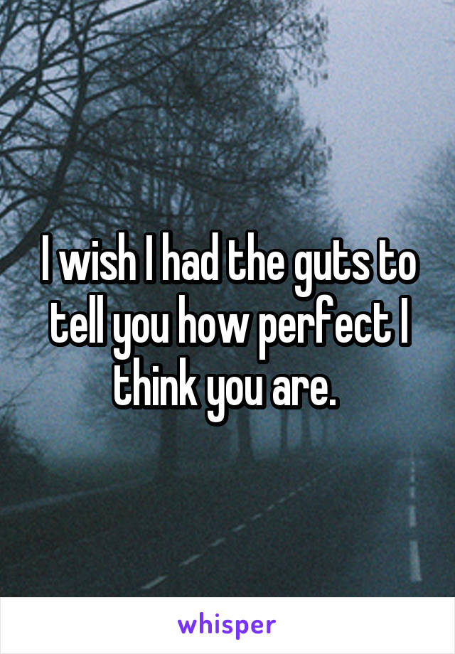 I wish I had the guts to tell you how perfect I think you are.