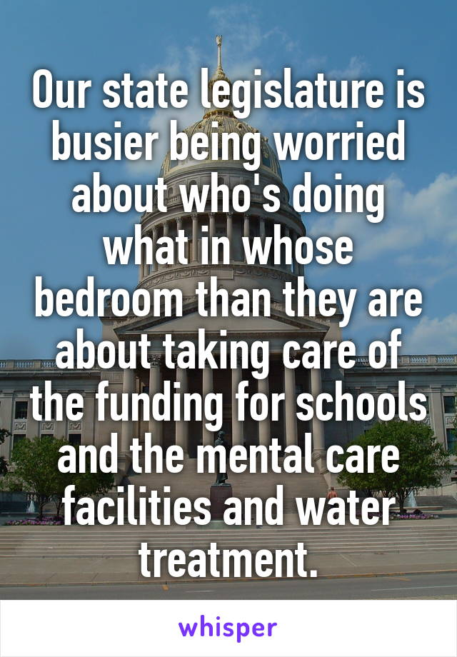 Our state legislature is busier being worried about who's doing what in whose bedroom than they are about taking care of the funding for schools and the mental care facilities and water treatment.