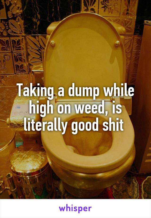 Taking a dump while high on weed, is literally good shit