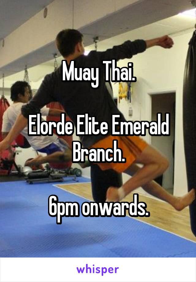 Muay Thai.  Elorde Elite Emerald Branch.  6pm onwards.