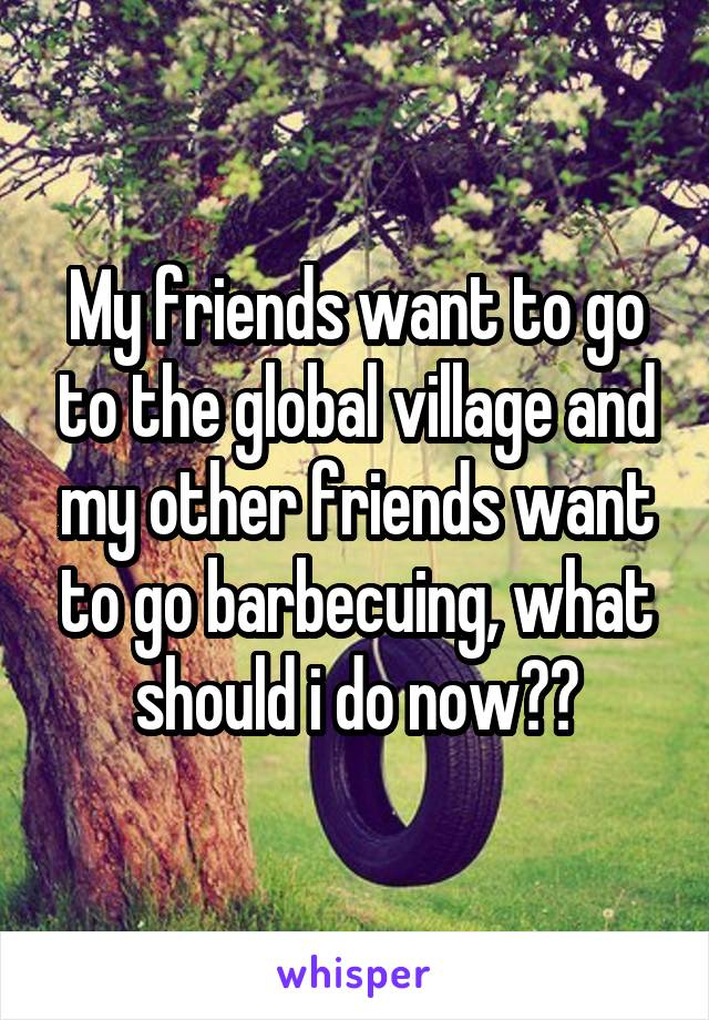My friends want to go to the global village and my other friends want to go barbecuing, what should i do now??