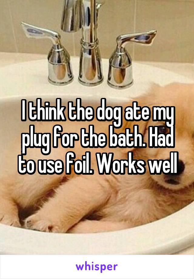 I think the dog ate my plug for the bath. Had to use foil. Works well