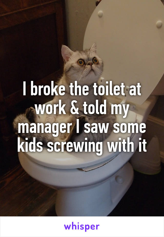 I broke the toilet at work & told my manager I saw some kids screwing with it