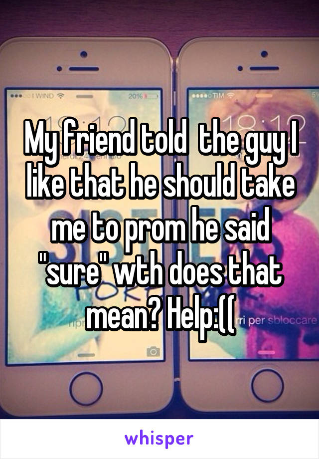 "My friend told  the guy I like that he should take me to prom he said ""sure"" wth does that mean? Help:(("
