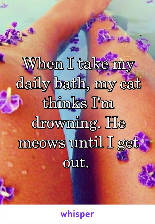 When I take my daily bath, my cat thinks I'm drowning. He meows until I get out.