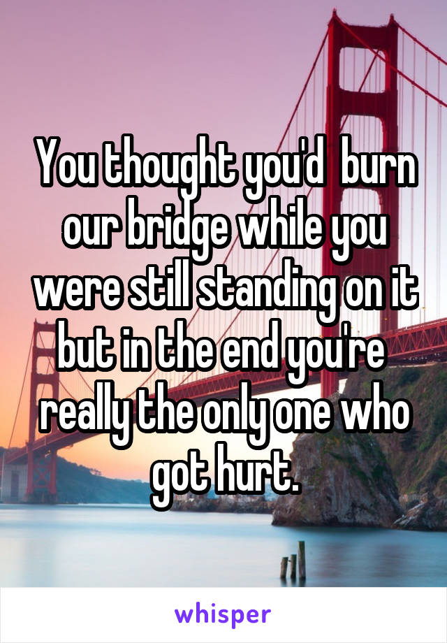 You thought you'd  burn our bridge while you were still standing on it but in the end you're  really the only one who got hurt.