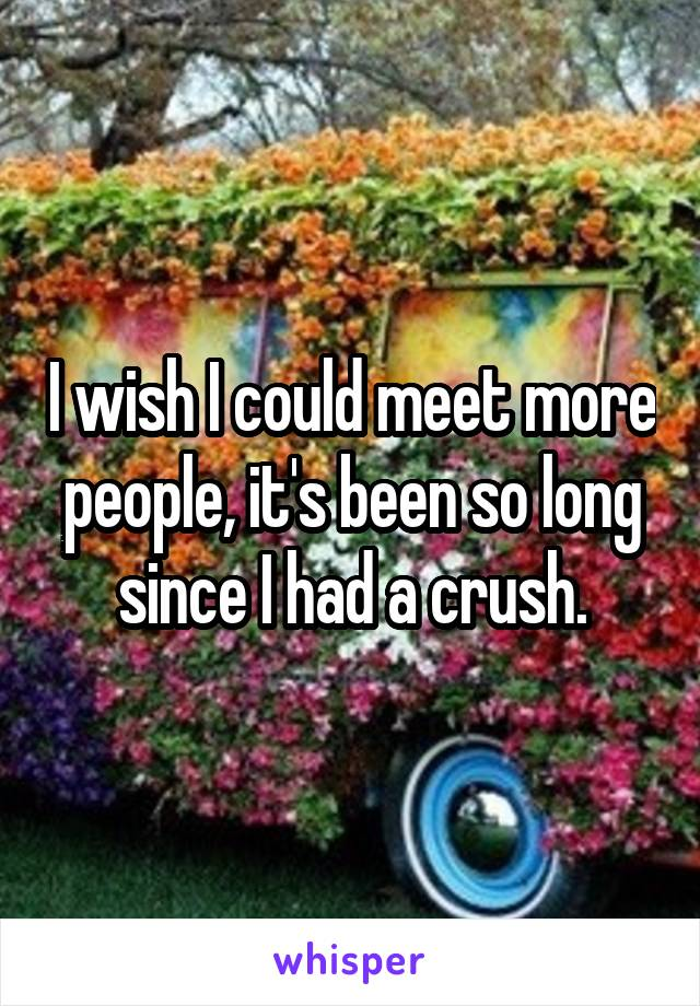 I wish I could meet more people, it's been so long since I had a crush.
