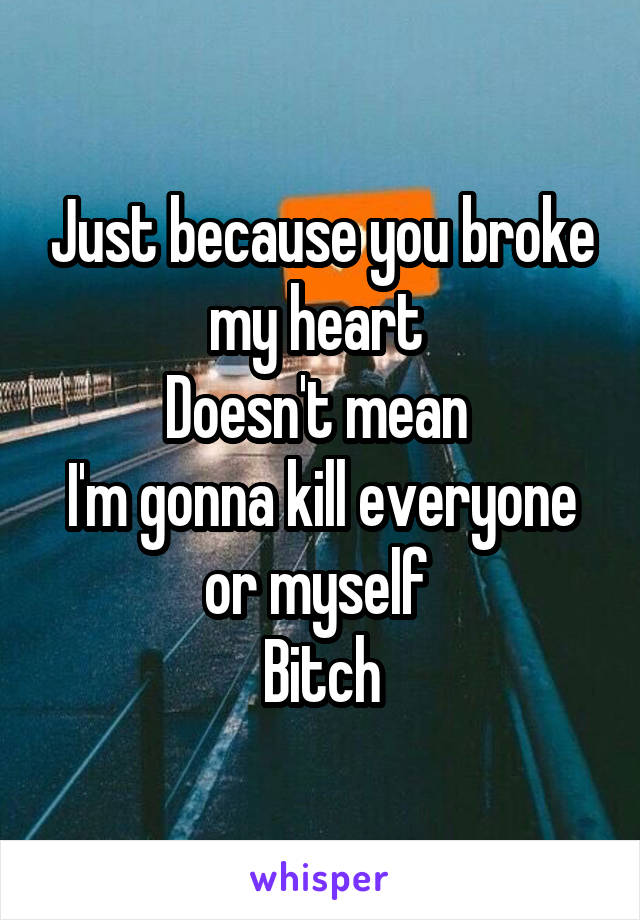 Just because you broke my heart  Doesn't mean  I'm gonna kill everyone or myself  Bitch
