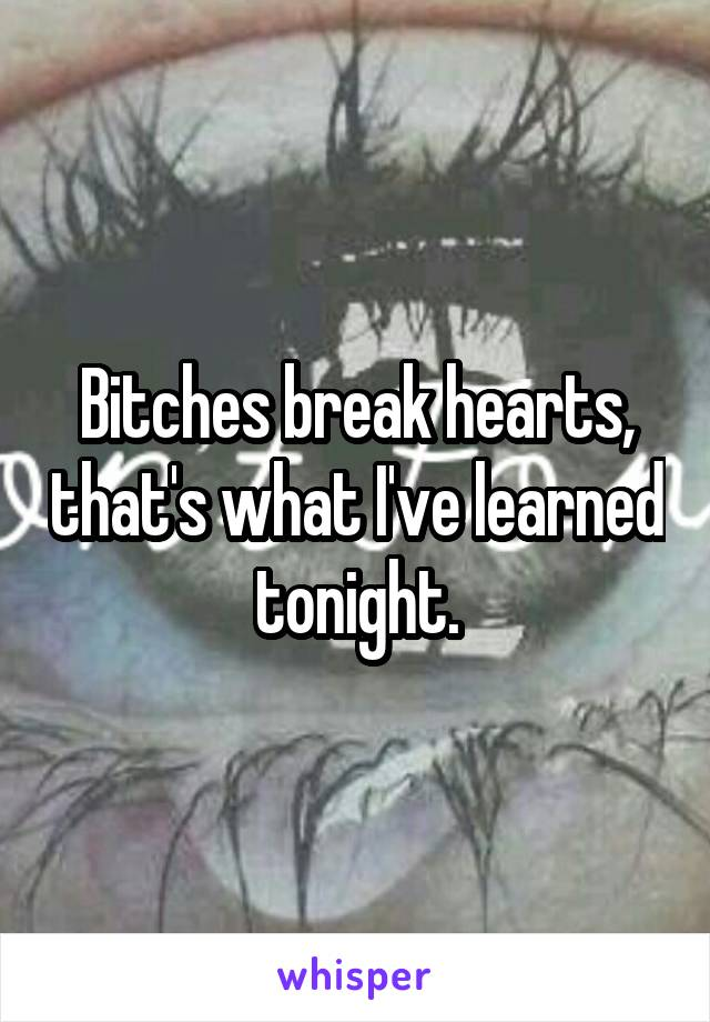 Bitches break hearts, that's what I've learned tonight.
