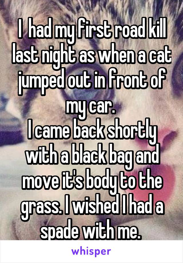 I  had my first road kill last night as when a cat jumped out in front of my car.  I came back shortly with a black bag and move it's body to the grass. I wished I had a spade with me.