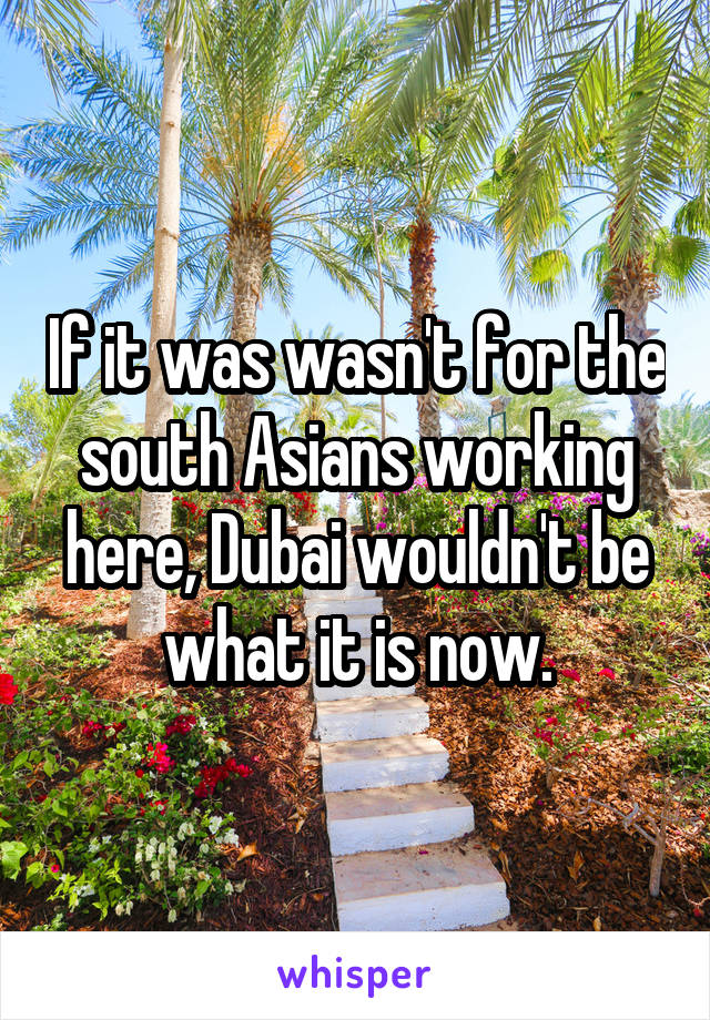 If it was wasn't for the south Asians working here, Dubai wouldn't be what it is now.