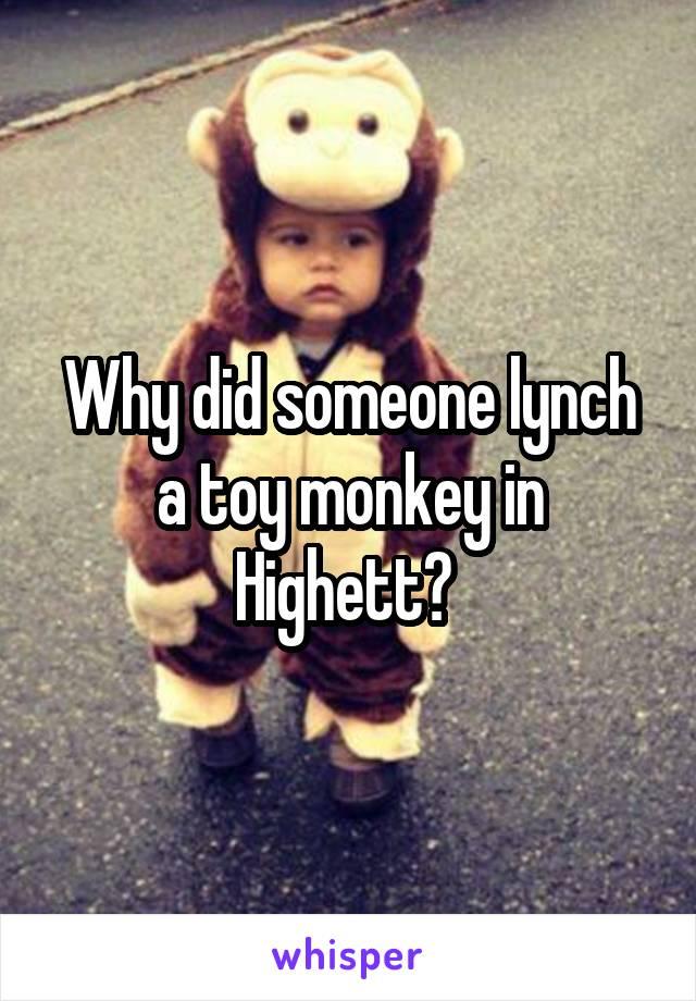 Why did someone lynch a toy monkey in Highett?