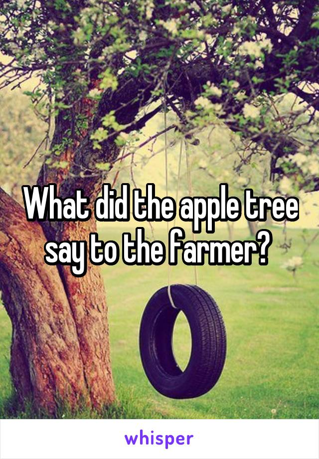 What did the apple tree say to the farmer?