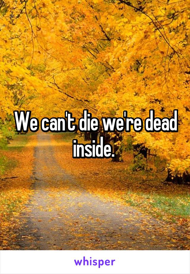 We can't die we're dead inside.