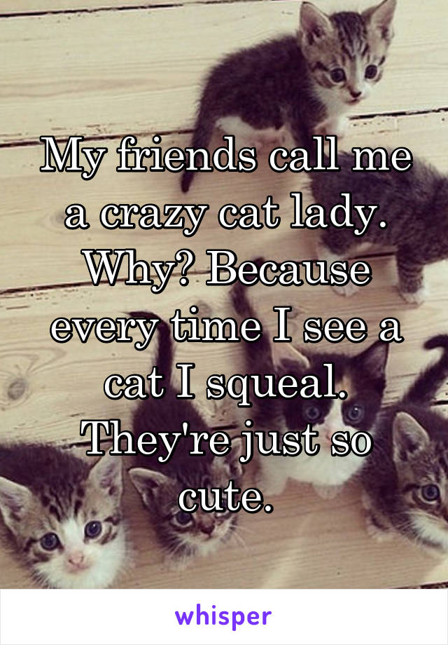 My friends call me a crazy cat lady. Why? Because every time I see a cat I squeal. They're just so cute.