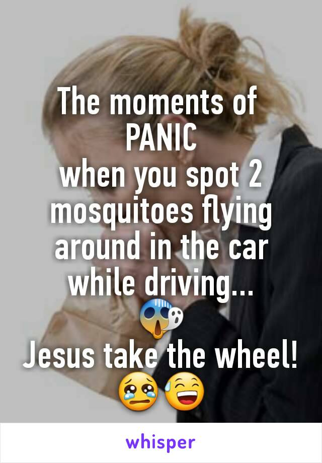 The moments of  PANIC when you spot 2 mosquitoes flying around in the car while driving... 😱 Jesus take the wheel! 😢😅