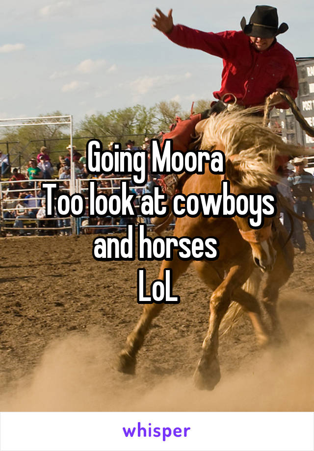Going Moora  Too look at cowboys and horses  LoL