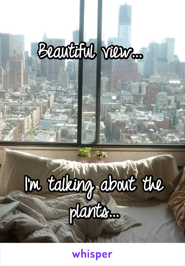 Beautiful view...      I'm talking about the plants...