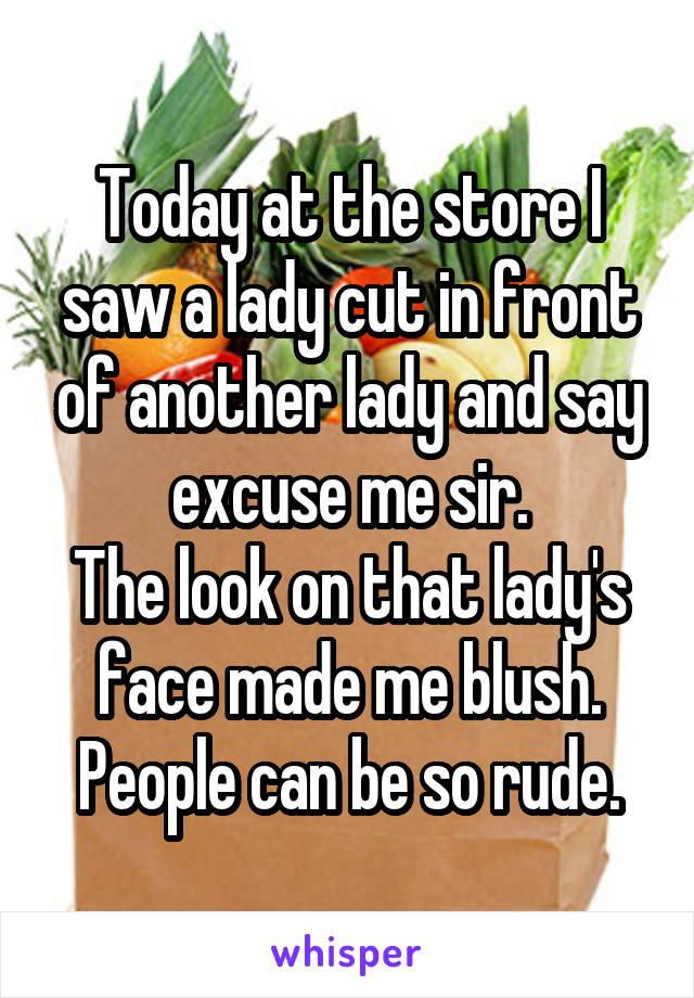 Today at the store I saw a lady cut in front of another lady and say excuse me sir. The look on that lady's face made me blush. People can be so rude.
