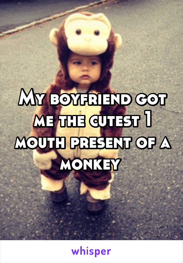 My boyfriend got me the cutest 1 mouth present of a monkey