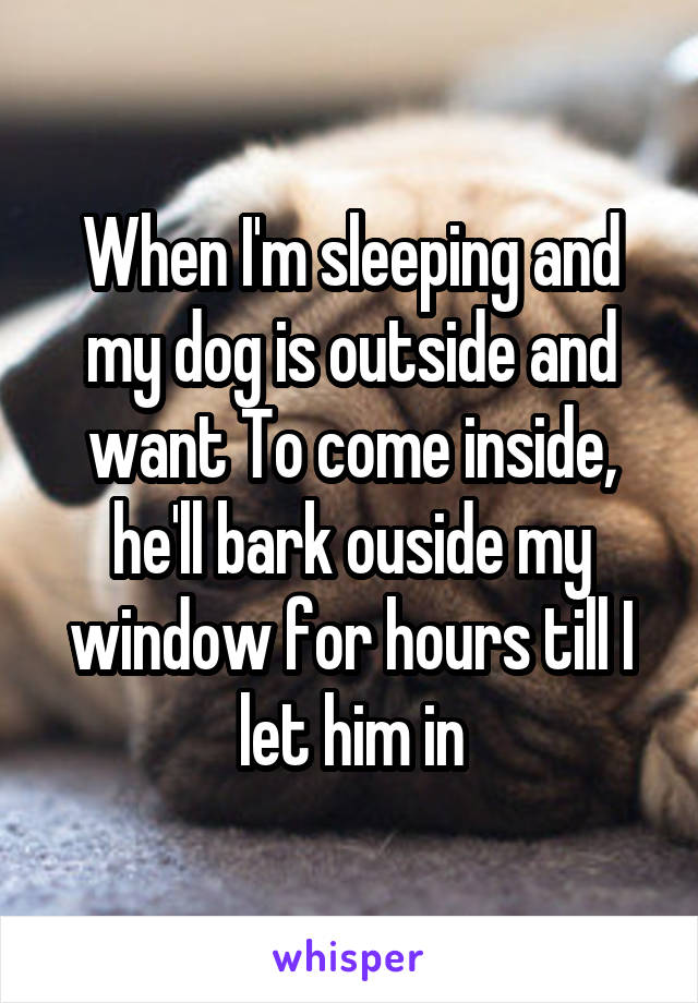 When I'm sleeping and my dog is outside and want To come inside, he'll bark ouside my window for hours till I let him in