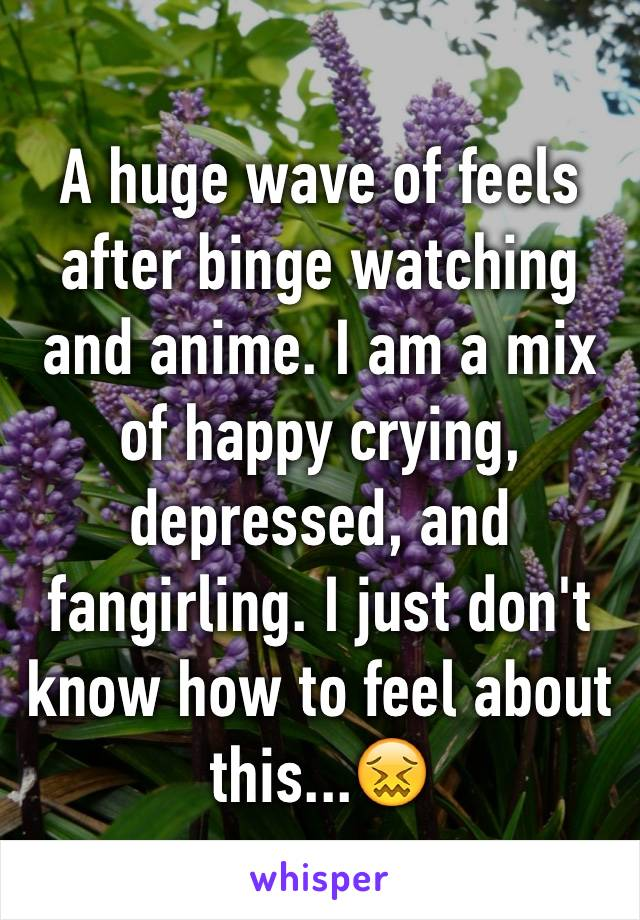 A huge wave of feels after binge watching and anime. I am a mix of happy crying, depressed, and fangirling. I just don't know how to feel about this...😖