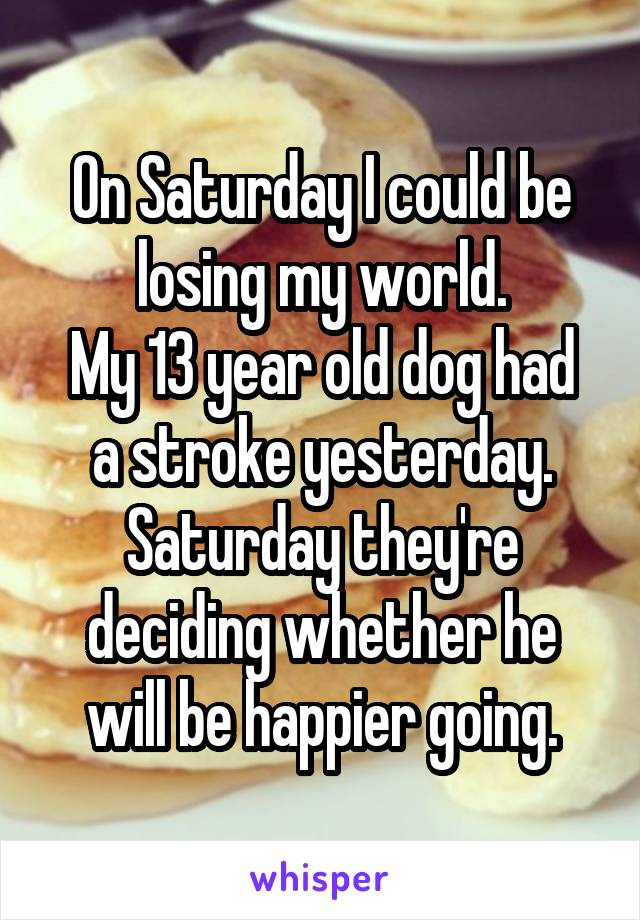 On Saturday I could be losing my world. My 13 year old dog had a stroke yesterday. Saturday they're deciding whether he will be happier going.