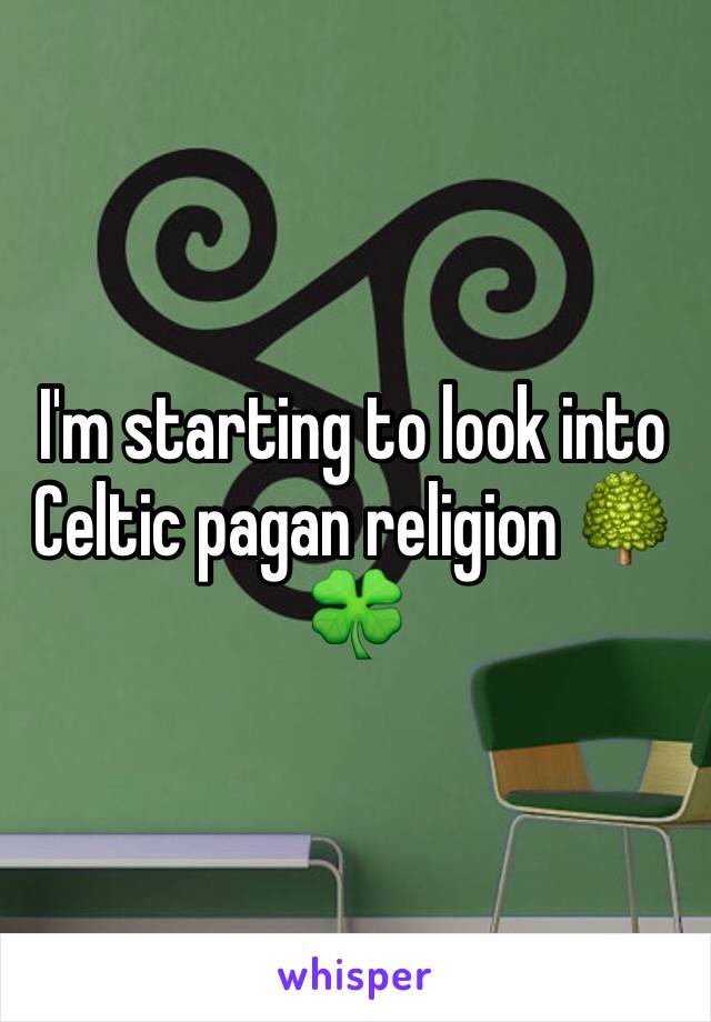 I'm starting to look into Celtic pagan religion 🌳🍀