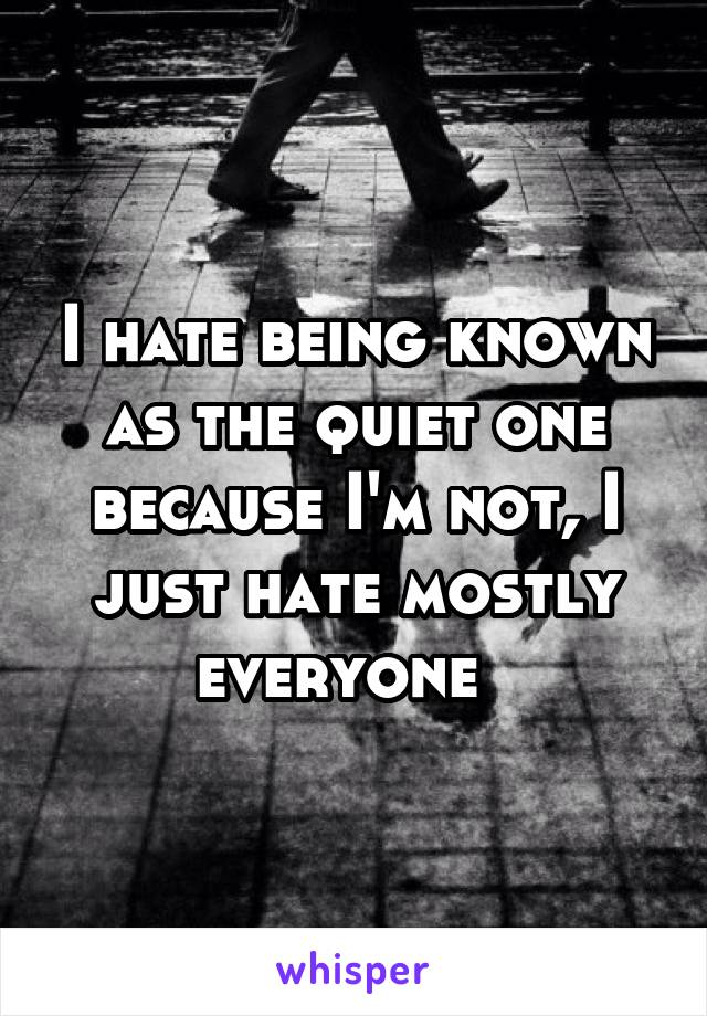 I hate being known as the quiet one because I'm not, I just hate mostly everyone