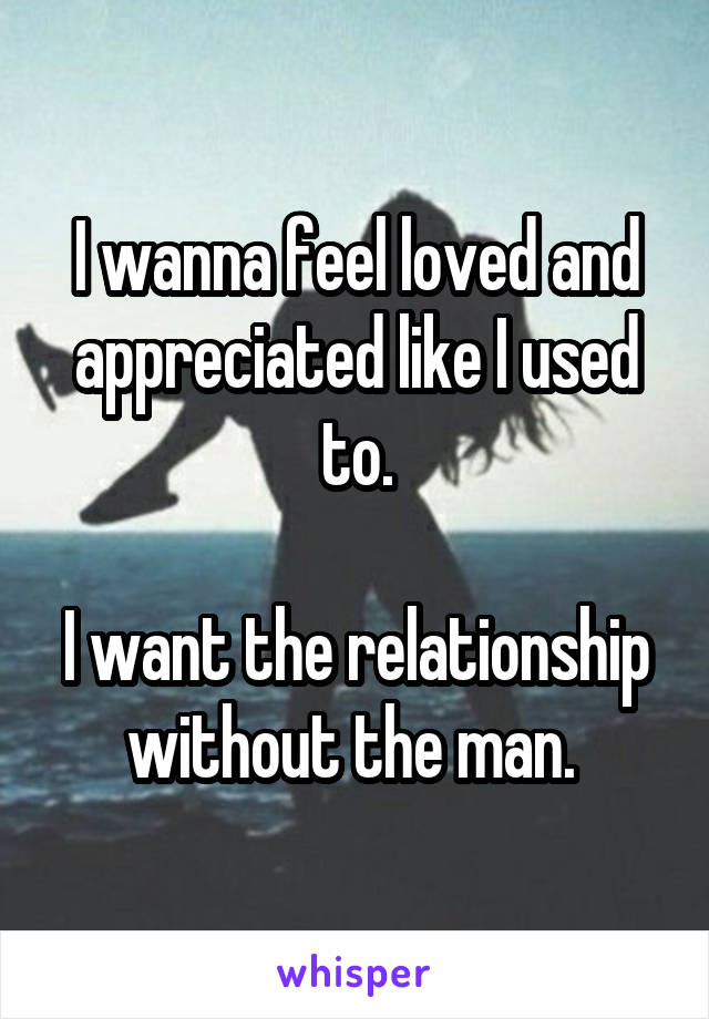 I wanna feel loved and appreciated like I used to.  I want the relationship without the man.