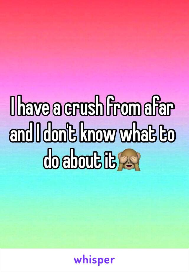 I have a crush from afar and I don't know what to do about it🙈