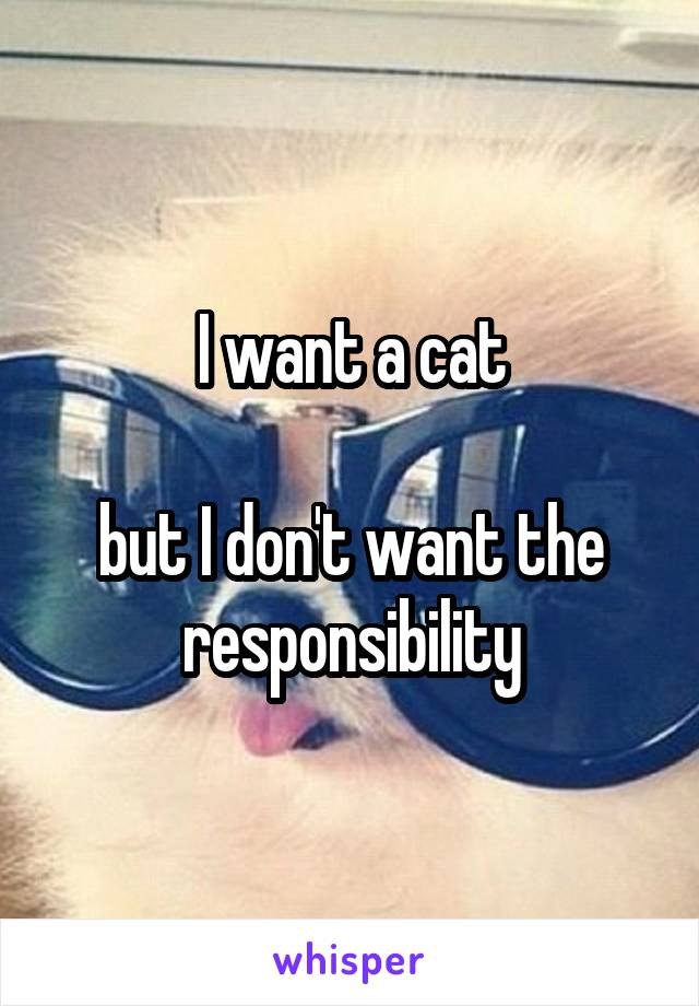 I want a cat  but I don't want the responsibility