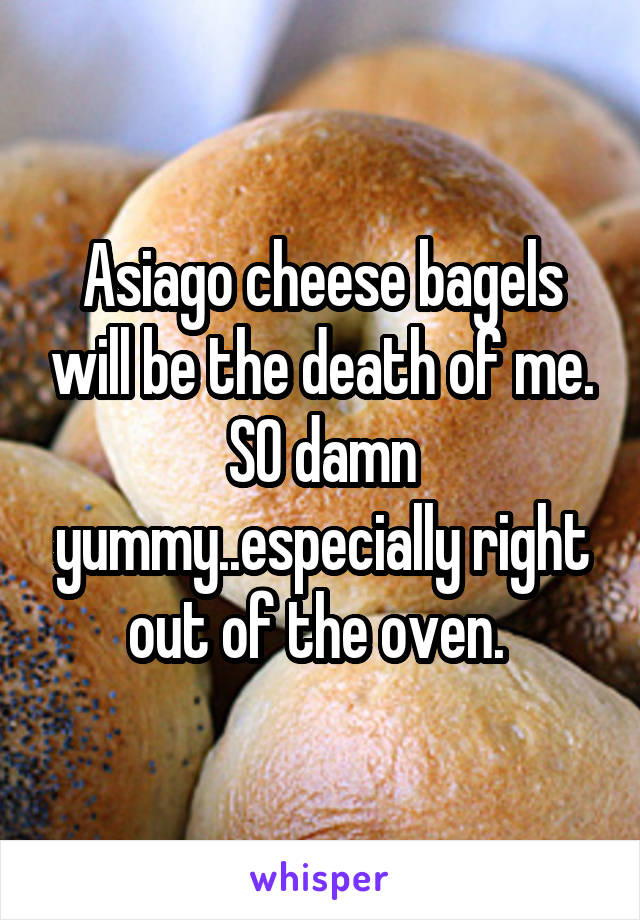 Asiago cheese bagels will be the death of me. SO damn yummy..especially right out of the oven.