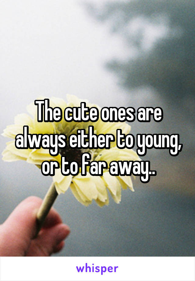 The cute ones are always either to young, or to far away..