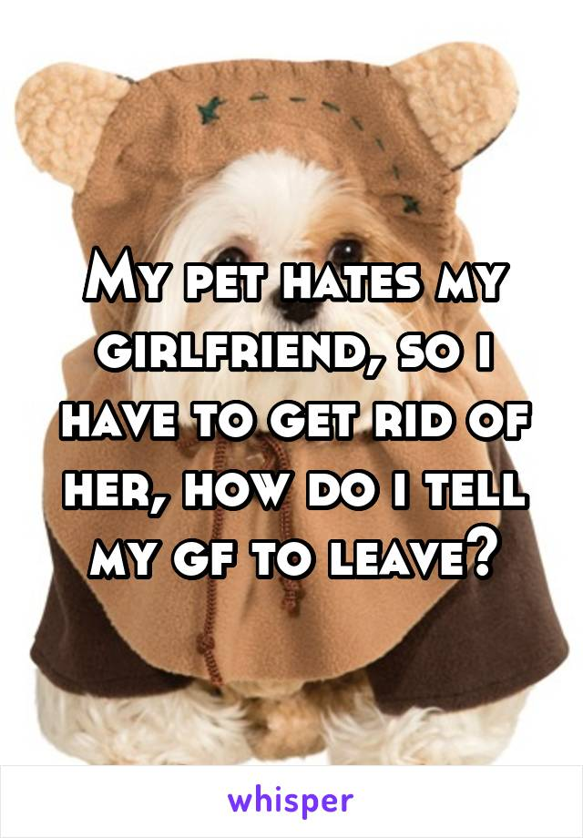 My pet hates my girlfriend, so i have to get rid of her, how do i tell my gf to leave?