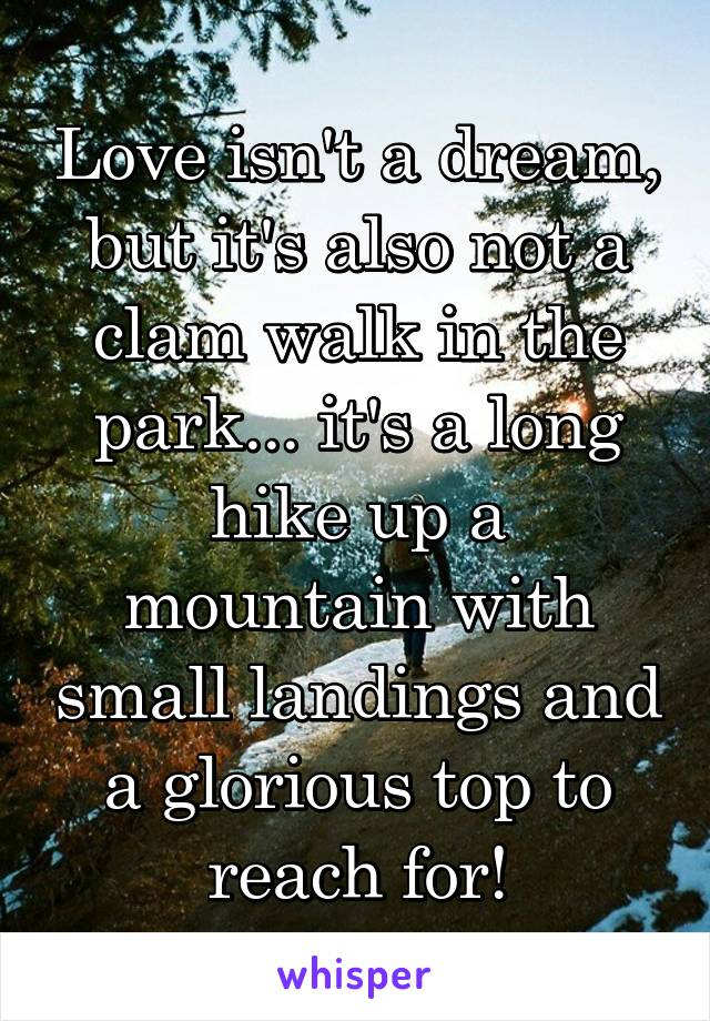 Love isn't a dream, but it's also not a clam walk in the park... it's a long hike up a mountain with small landings and a glorious top to reach for!
