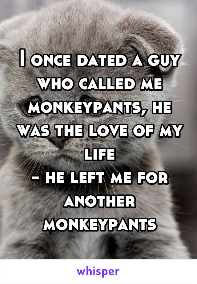 I once dated a guy who called me monkeypants, he was the love of my life - he left me for another monkeypants
