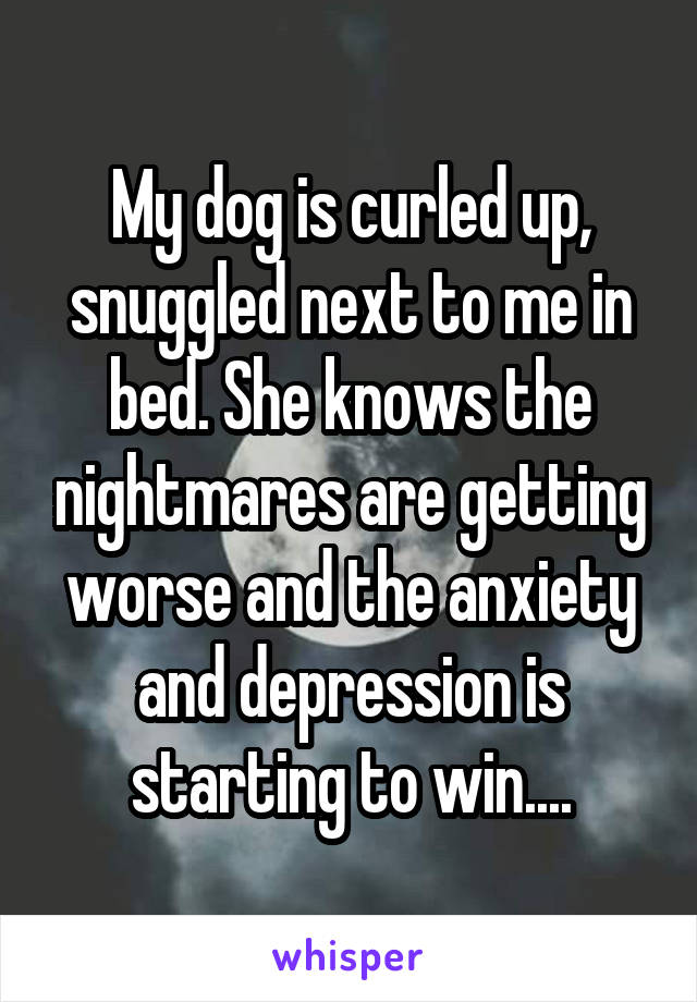 My dog is curled up, snuggled next to me in bed. She knows the nightmares are getting worse and the anxiety and depression is starting to win....