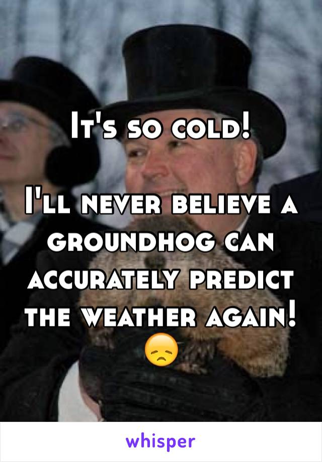 It's so cold!  I'll never believe a groundhog can accurately predict the weather again!  😞
