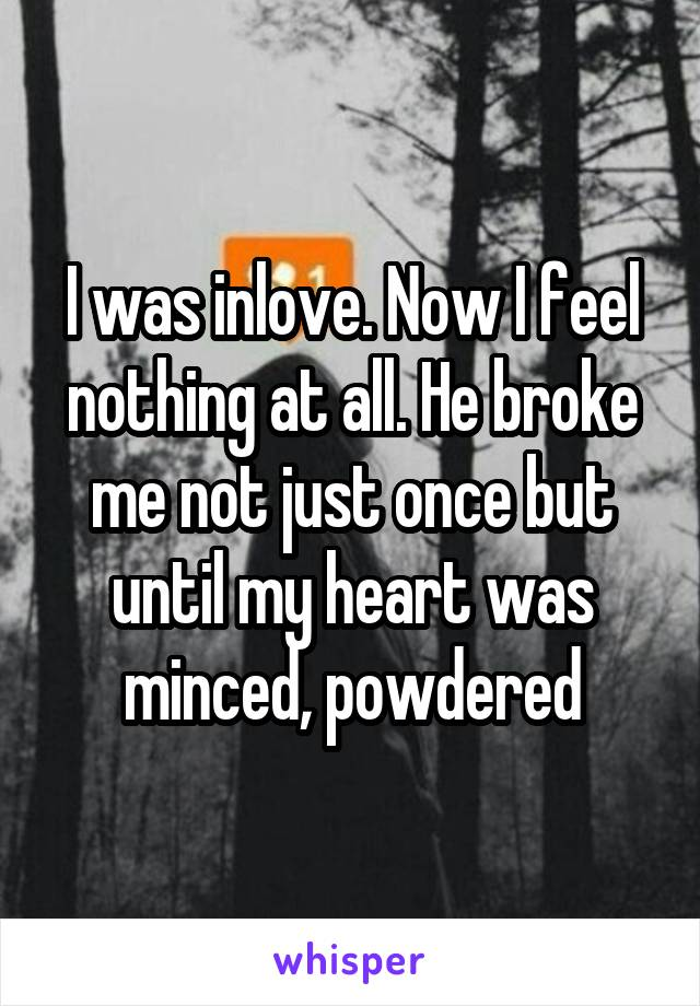 I was inlove. Now I feel nothing at all. He broke me not just once but until my heart was minced, powdered